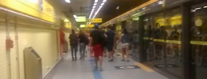 Estação Fradique Coutinho (Metrô) is one of Lieux qui ont plu à Tuba.