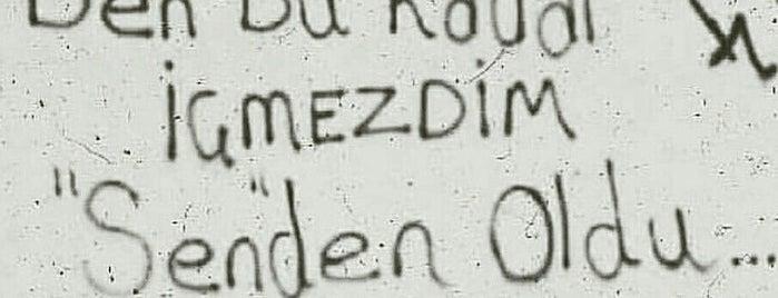 Kapısız Meyhane is one of ANTALYA YEMEK MEKANLARI 🍴🍗🍲🍳🍝🍜🍩🍰🍕🍔🍤🍦🍨.