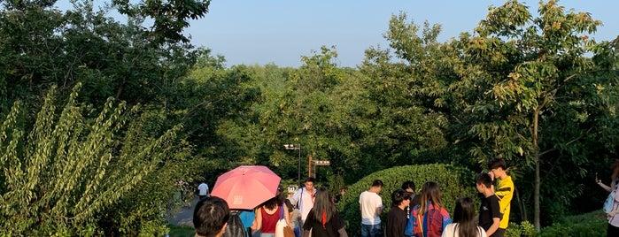 天生桥风景区入口 | Entrance, Tianshengqiao Scenic Area is one of Tempat yang Disukai Alo.