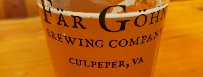 Far Gohn Brewing Company is one of Lugares favoritos de Karin.