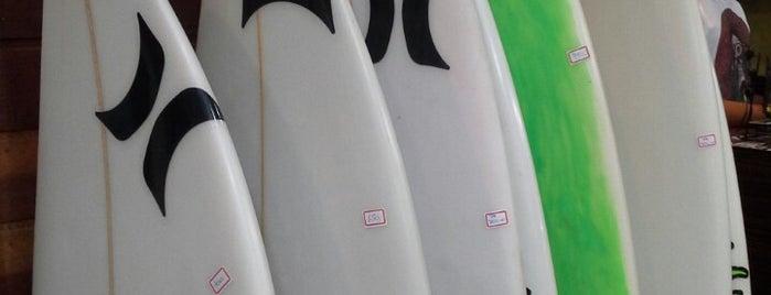 Surf Line is one of Lieux qui ont plu à Renata.