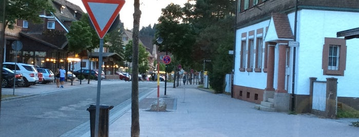 Titisee is one of Timmyさんのお気に入りスポット.