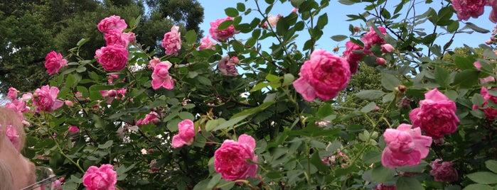 Giardini di Alessandro is one of Posti che sono piaciuti a Lara.