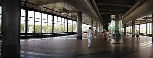 Выставка в метро Воробьевы горы is one of Lara : понравившиеся места.