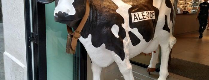 Ale-hop is one of Zaragoza.