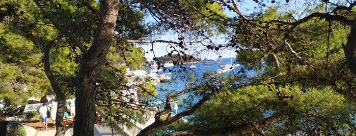 Amfora Beach is one of dalmacya.