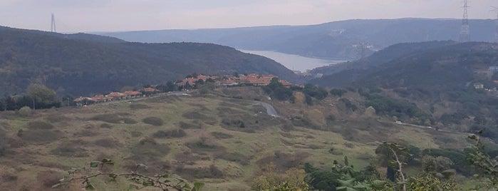 iskenderoğlu Yıldız Tepesi Çay Bahçesi is one of Manzara.