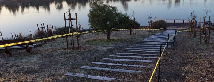 Lake Cunningham Park is one of Locais curtidos por Ivan.