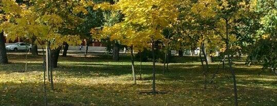 Парк «Спортивный» is one of Oleksandr : понравившиеся места.