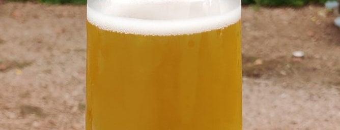 Zillicoah Beer Company is one of Posti salvati di Rachel.