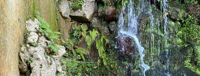 Fountain of Regaleira/Abundance is one of Orte, die Paul gefallen.