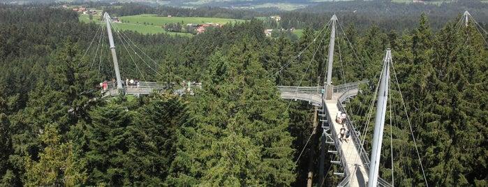 Skywalk Allgäu is one of Bodensee 2020.