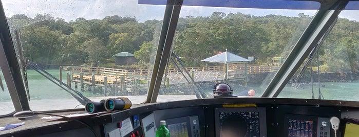 Rangitoto Ferry is one of Orte, die T. gefallen.