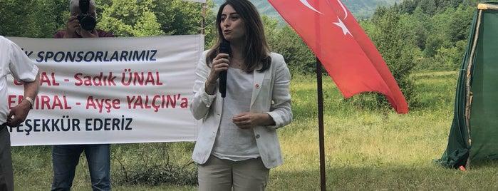 Alıçlı Köyü is one of Ulus İlçesi Köyleri.