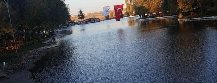 Sakaryabaşı Parkı is one of Eskişehir NeYapsak?.
