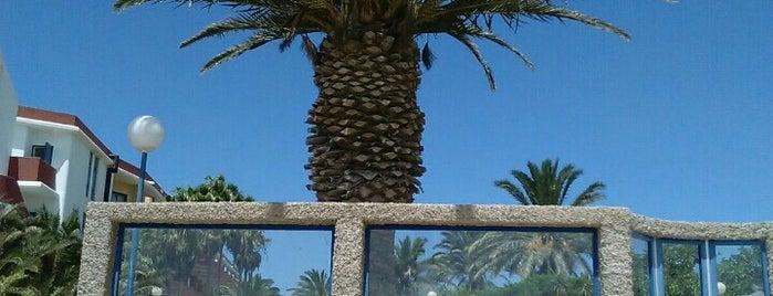 Hotel Fuerteventura Playa is one of Lugares para volver.