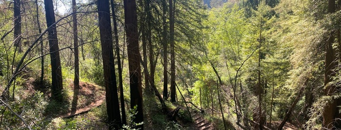 San-Francisco-Bay-Area_Adventures-Hiking-Parks-etc