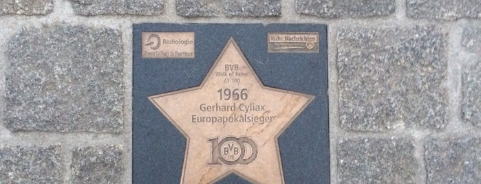 BVB Walk of Fame #43 1966 Gerhard Cyliax Europapokalsieger is one of BVB Walk of Fame.