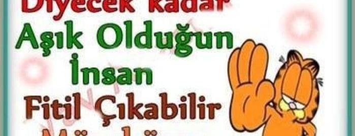 Arcadium is one of Guzel Sozler.