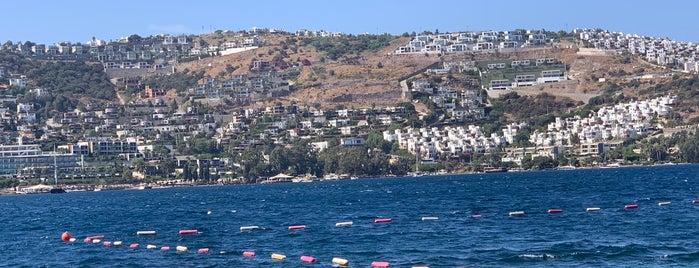 Polpo Boutique Hotel & Beach is one of Gespeicherte Orte von İrem.