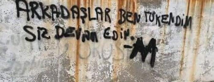 Özel Ark Anaokulu is one of Locais curtidos por Bengü Deliktaş.
