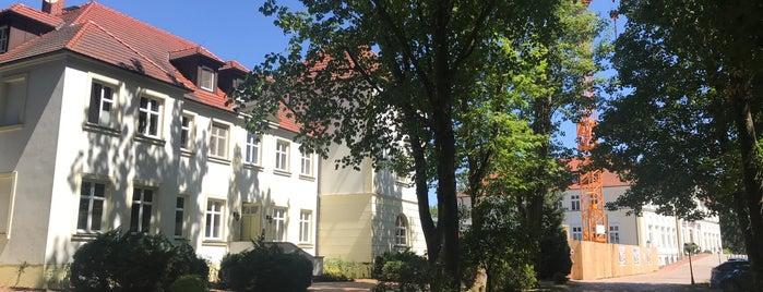 GreenLine Hotel Schloss Schorssow is one of Hotels 2.