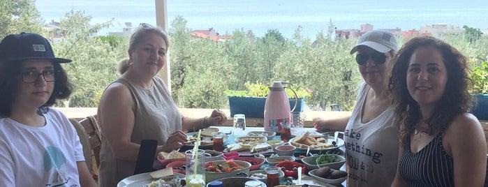 Kaymak Tepesi kahvaltı et mangal is one of Kahvaltıcılar.