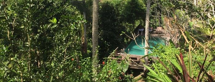 Kampung Resort Ubud is one of Lieux qui ont plu à Clément.
