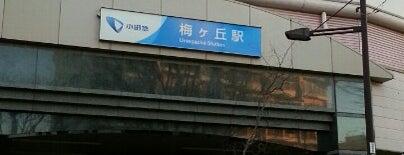 梅ヶ丘駅 (OH09) is one of 小田急線.