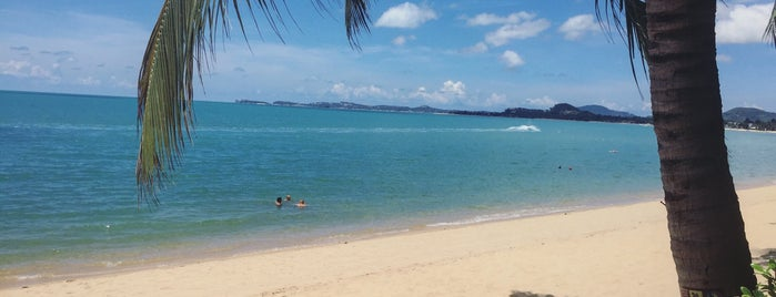 Mae Nam Beach is one of VACAY - KOH SAMUI.