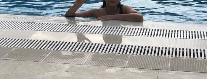 NG Sapanca Sessiz Havuz - Silence Pool is one of Lieux qui ont plu à Akif.