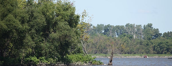Anderson Lake SFWA is one of Illinois State Parks.