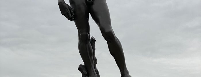 Statue of David is one of Top Things to do in Sioux Falls.