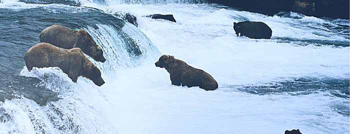 Katmai National Park & Preserve is one of National Recreation Areas.