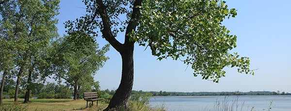 William W. Powers State Fish and Wildlife Area is one of Illinois State Parks.