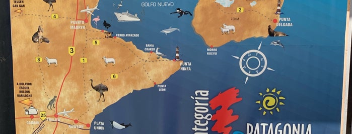 Puerto Madryn is one of Chile - Argentina 2012.