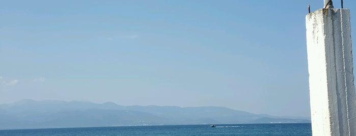 """Εστιατόριο """"Μουριές"""" is one of Faves 2."""