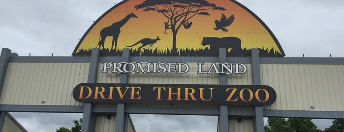 Branson's Promised Land Zoo is one of Locais salvos de Lizzie.