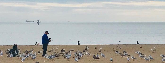 Brighton Beach is one of Orte, die Ashley gefallen.