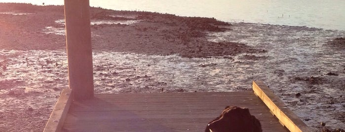 Weymouth Beach is one of Ricardo'nun Beğendiği Mekanlar.