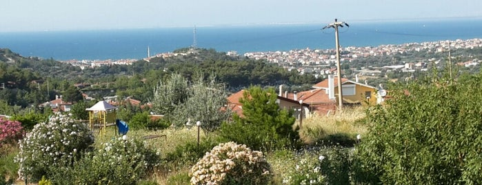 Yağmurkent Zeytinalanı is one of Orte, die Erkan gefallen.