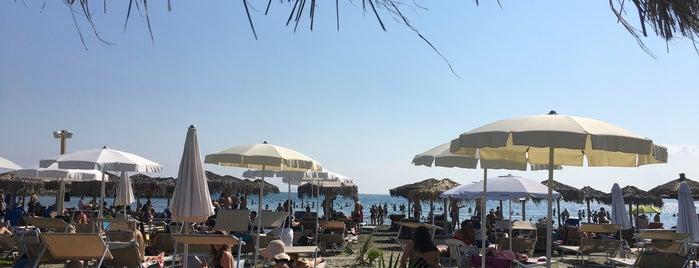 Malindi Beach Bar & Restaurant is one of Georgeさんのお気に入りスポット.