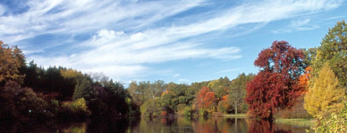 The Morton Arboretum is one of CHICAGO.