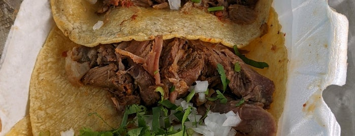 South Philly Barbacoa is one of Philadelphia.