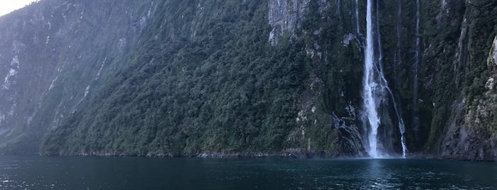 Milford Sound Cruise is one of New Zealand 2020.