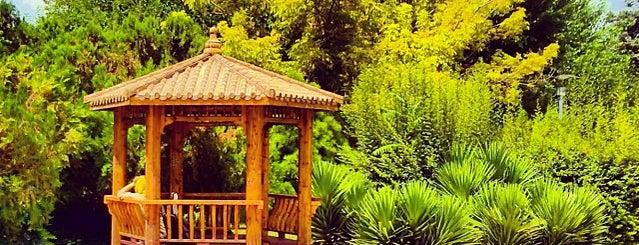 Laleh Park | پارک لاله is one of สถานที่ที่ Hamilton ถูกใจ.