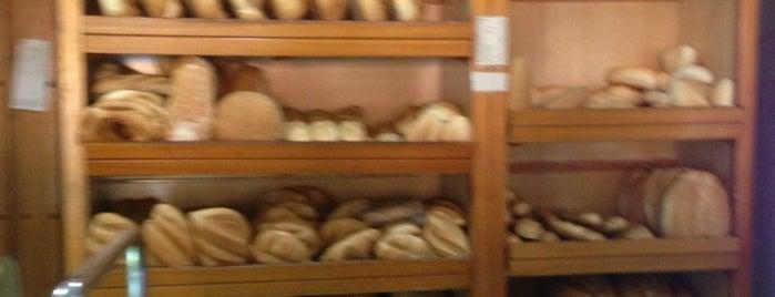 Panaderia Gonzalez Arellano is one of Posti salvati di Ángel.