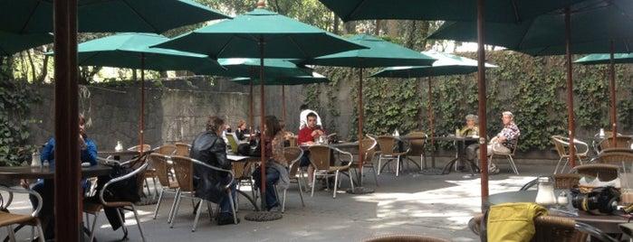 Meridien Cafetería is one of Lieux qui ont plu à Jon.