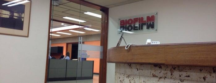 Biofilm is one of Aquí Se debería Poder Rayar las Paredes.
