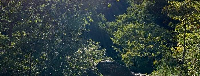 Hemlock Falls is one of Lieux sauvegardés par Lizzie.